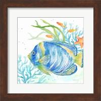 Sea Life Serenade I Fine-Art Print