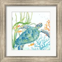 Sea Life Serenade IV Fine-Art Print