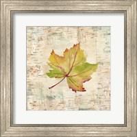 Nature Walk Leaves III Fine-Art Print