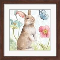 Spring Softies Bunnies II Fine-Art Print
