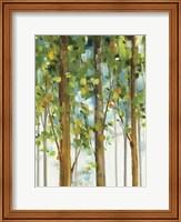 Forest Study II SPC Fine-Art Print