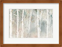 A Woodland Walk I Fine-Art Print
