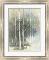 Birch Grove II Fine-Art Print