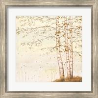 Golden Birch II Off White Fine-Art Print