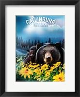 Gatlinburg Tennessee Fine-Art Print