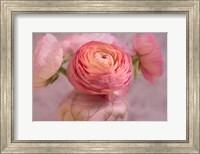 Small Flower Fine-Art Print