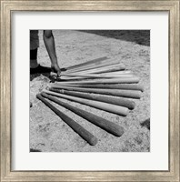 1950s Baseball Player Selecting A Variety Of Bats Fine-Art Print