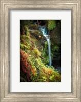 Black Forest Lower Falls Fine-Art Print