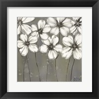 Monochrome Daisies Fine-Art Print