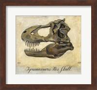 Tyrannosaurus Rex Skull Fine-Art Print