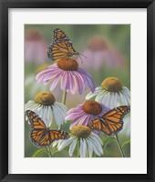 Three Monarchs Fine-Art Print