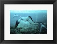 Sleeping Mermaid Fine-Art Print