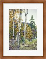 Edge of the Forest Fine-Art Print
