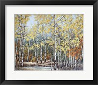 New Aspen Grove Fine-Art Print