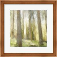Forest Days Fine-Art Print