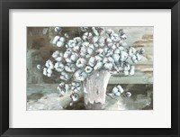 Farmhouse Cotton Bolls Still life Fine-Art Print