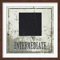 Intermediate Square Fine-Art Print