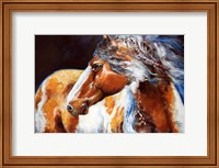 Mohican Indian War Horse Fine-Art Print