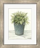 Old Bucket of Greenery Fine-Art Print