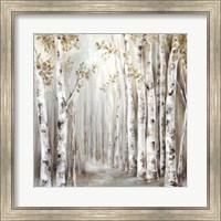 Sunset Birch Forest III Fine-Art Print