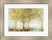 Forest River Fine-Art Print