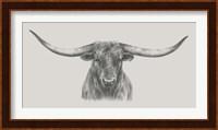 Longhorn Bull Fine-Art Print