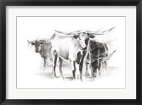 Contemporary Cattle II Fine-Art Print