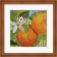 Florida Oranges Fine-Art Print