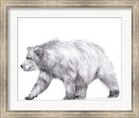 Wildlife Trail III Fine-Art Print