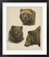 Wild World IV Fine-Art Print
