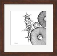 Aquatic Slice 1 Fine-Art Print
