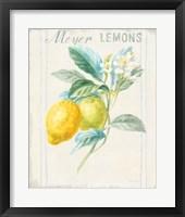 Floursack Lemon II v2 Fine-Art Print