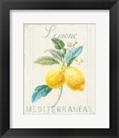 Floursack Lemon III Fine-Art Print