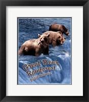 Great Bear Rainforest Fine-Art Print