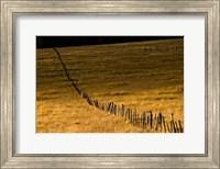 Escudilla Mountain Meadow Fall 1 Fine-Art Print