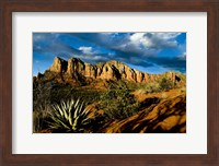 Red Rocks Of Sedona Fine-Art Print