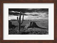 Saguaros Lost Dutchman State Park Arizona Superstition Mtns 2 Fine-Art Print