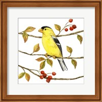 Birds & Berries II Fine-Art Print