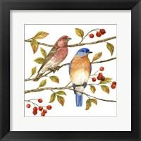 Birds & Berries IV Fine-Art Print