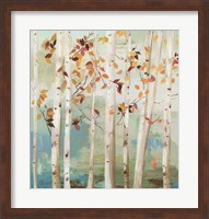 Fall Birch Trees Fine-Art Print