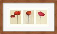 Spring Triptych Fine-Art Print
